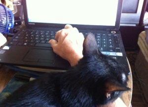 My 'life happens' moment when Sookie helps me type this blog.