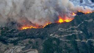 glendora forest fire