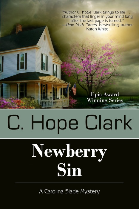 Newberry Sin FINAL COVER.jpg